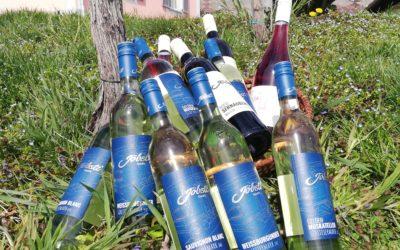 Neues Frühlingsweinpaket – 12 Flaschen – GRATIS VERSAND